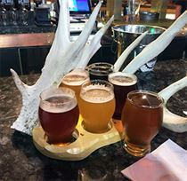 Big Buck Brewery Rack of Beer